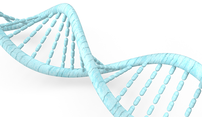 The blue DNA in white background for  medical concept 3d rendering.